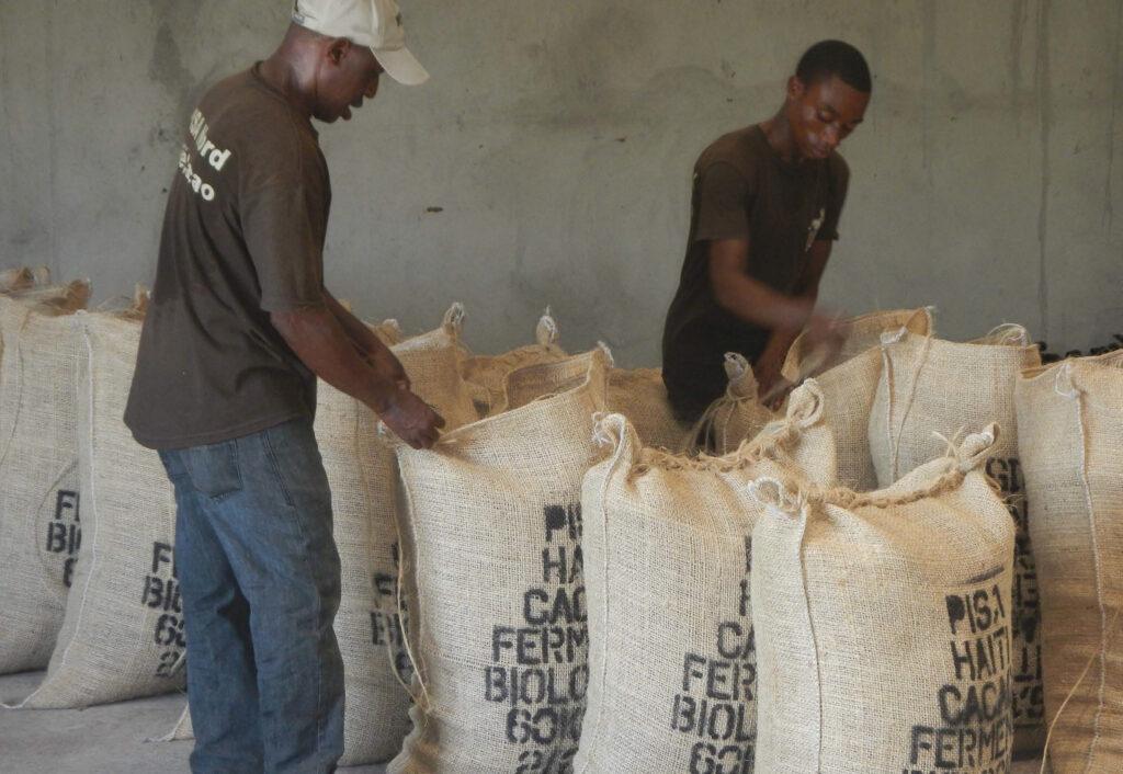 Haiti PISA - muži při práci ve skladu