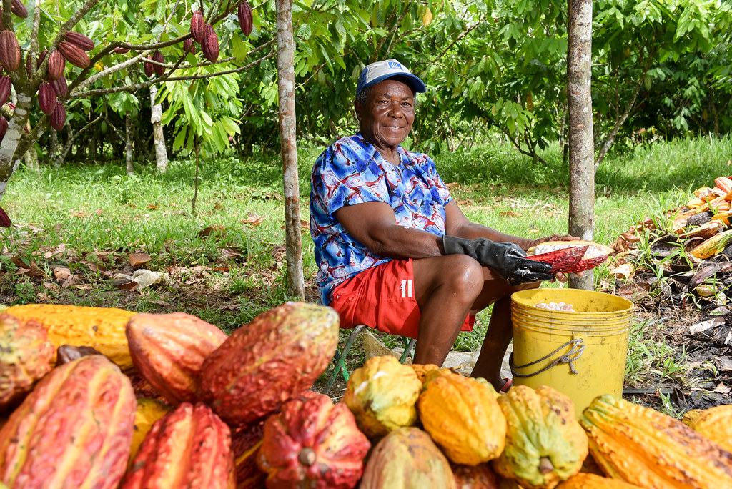 Kolumbie Guave fotka: Neil Palmer / CIAT